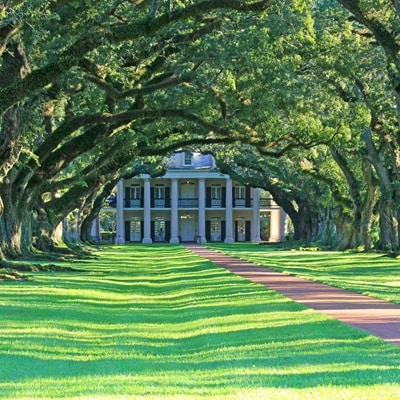 USA Louisiana Vacherie OakAlleyPlantation 186937701 GE Sept19 1300x1300