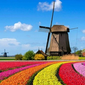 Image of Best of Holland