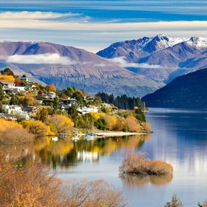 Image of Contrasts Of New Zealand