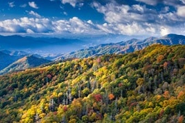 USA GreatSmokyMountainsNP 451592983 800x533